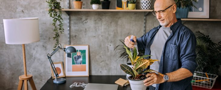 Setting up a home office for remote work should include some thinking around ambiance, like lighting, plants and sound.